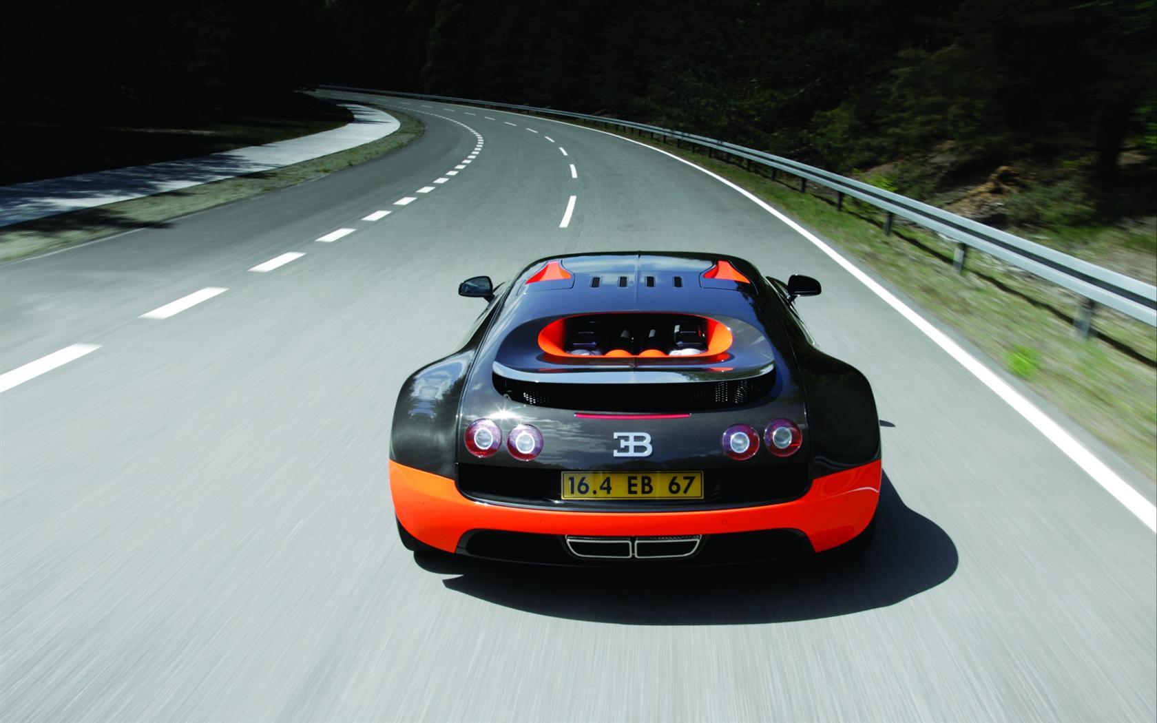 Superbe Bugatti Veyron Crystal Nature Sea Car 2014 | El Tony